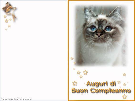 Amato biglietti d'auguri con gatti - download DV24