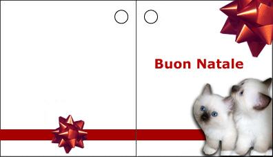 Biglietti d 39 auguri con gatti download for Biglietti auguri natale da stampare